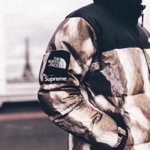 [THE NORTH FACE x SUPREME] 노스페이스X슈프림 다운 재킷